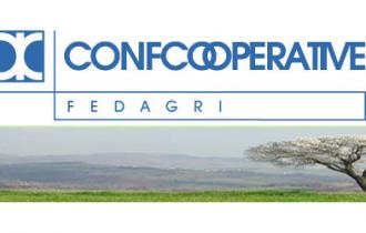 """Ortofrutta, Fedagri: """"In aumento le esportazioni"""""""