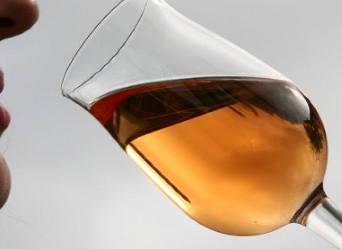 I Vini d'Alsazia e l'alta gastronomia italiana