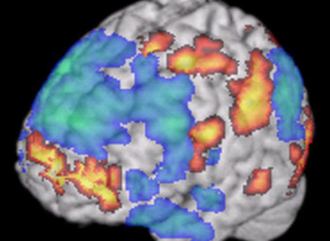 La grelina: l'ormone dell'appetito contro il morbo di Parkinson
