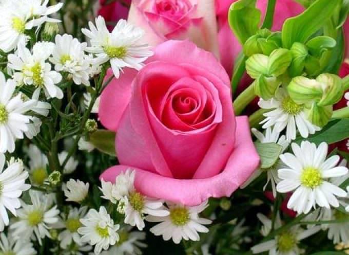 Floricoltura: l'accordo Usa-Ue sui dazi apre nuove prospettive al settore