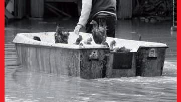 Aiuti Alluvione Veneto Novembre 2010, IBAN: IT62D0200802017000101116078