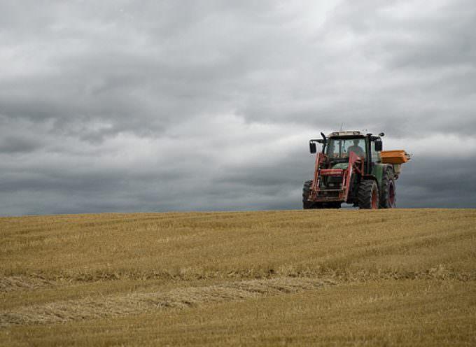 Crisi: senza interventi immediati e concreti oltre 100 mila imprese agricole chiuderanno i battenti nel 2010