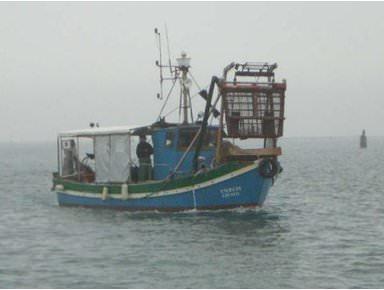 I pescatori salgono in cattedra a Slow Fish