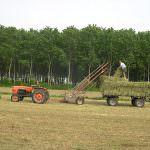 Trieste: Piano di sviluppo rurale – Un milioni di euro a sostegno dei giovani agricoltori