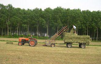 Agricoltura, calano i consumi grazie all'energia verde