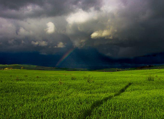 Agricoltura: Chiesto lo stato di calamità per i territori colpiti dal maltempo