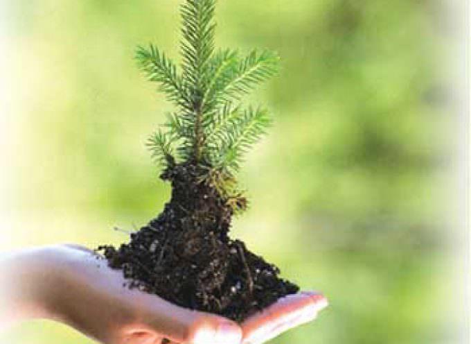Riforma ecologica PAC sostenuta da Federbio, Lipu e WWF
