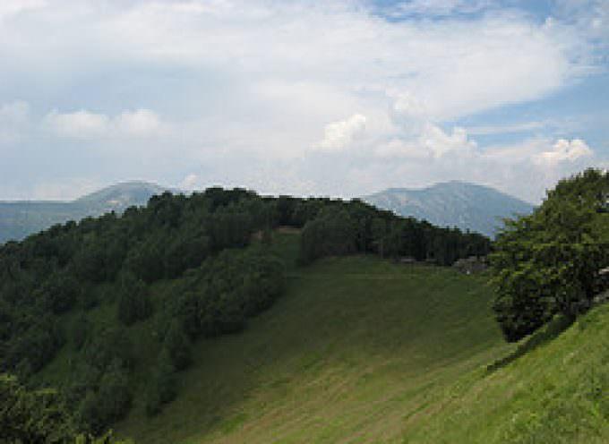 """Varese: Natura – """"Montherbora"""", ecofesta dedicata a tutto ciò che è naturale"""