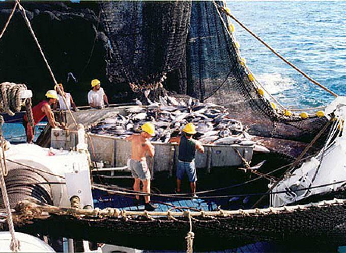 Tonno rosso, la pesca prosegue solo per la flotta italiana e francese