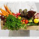 Brasile: verdura per chi fa la raccolta differenziata