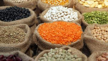 Livewell Diet: dal WWF, la dieta che fa bene alla salute ed all'ambiente
