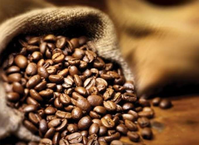 Caffè è te verde: una difesa contro il cancro al cervello