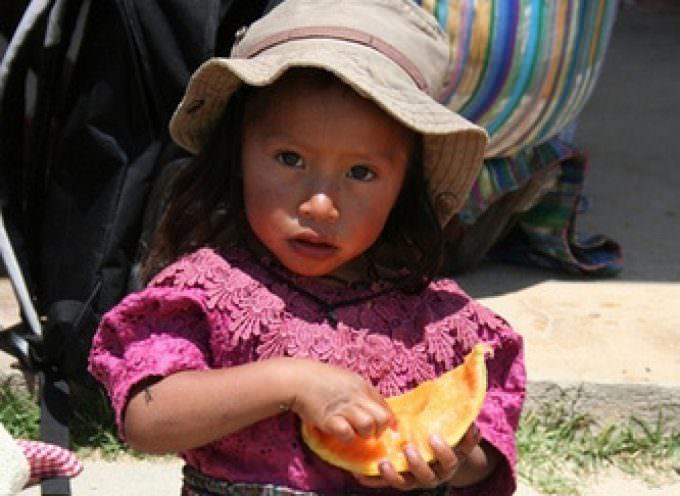 Contro la fame nel mondo più sviluppo agricolo e maggior sicurezza alimentare