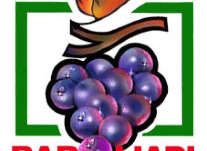 Baroliadi: i giochi senza frontiere dei paesi del Barolo