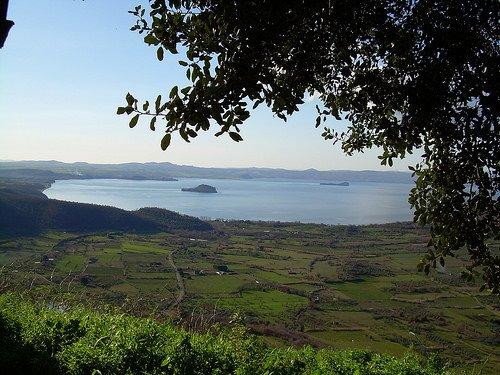 Agricoltura, biomasse, vino, agriturismo e tracciabilità a Viterbo e provincia