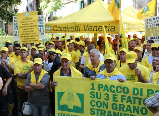 Elena Donazzan, Tutela del consumatore, è intervenuta al sit in della Coldiretti a Venezia