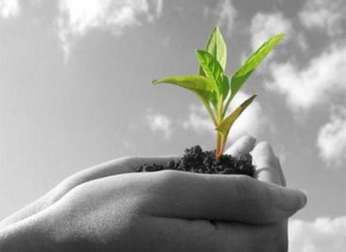 """Workshop """"Cibo ed Energia: un approccio sostenibile"""" organizzato dall'Enea"""