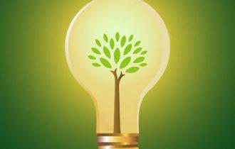 Dal seme alla lampadina: La Green Economy Made in Italy