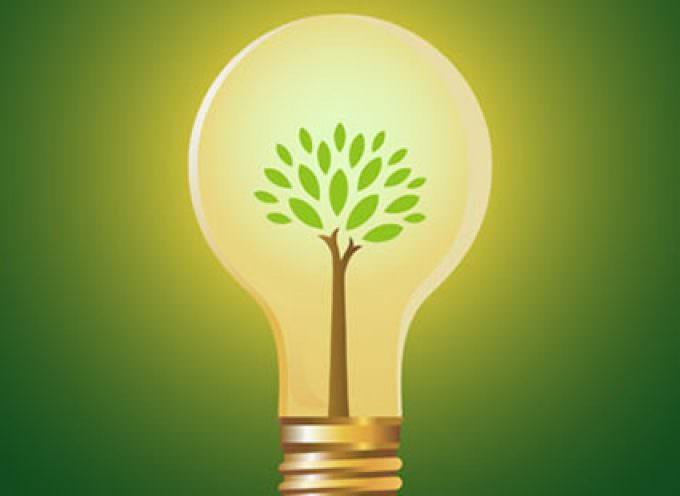 Energia: Coldiretti/Maccaferri, bene decreto rinnovabili Made in Italy