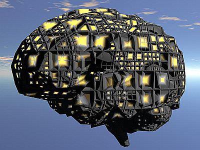 Se i sogni sono film, due parti del cervello sono registi