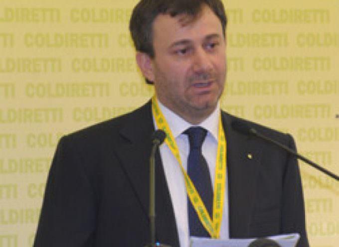 Finanziaria: Marini (Coldiretti), -16% prezzi agricoli