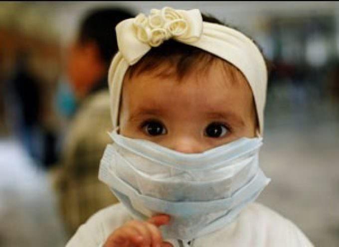 Influenza suina, trovato il paziente zero