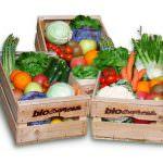 Modena, regolamento per i mercati bio e Km 0