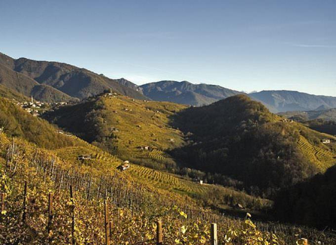 Veneto. Le colline del Prosecco candidate a Patrimonio dell'umanità UNESCO