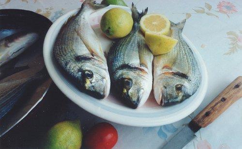 Pesce e frutti di mare proteggono la vista