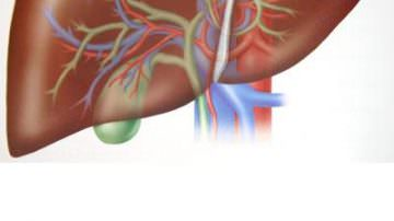 Da Modena arriva la mappa del fegato