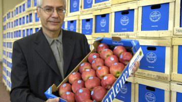VOG, le prospettive della prossima campagna melicola e il bilancio della stagione commerciale 2008/09