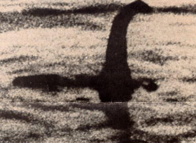 Nessie fotografato da Google Earth