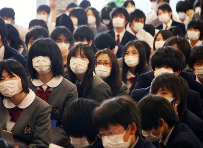 Influenza suina e scuole: il mondo reagisce così