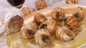 Gli italiani tornano a consumare le lumache