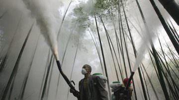 Veneto: Sequestrate 10 tonnellate di pesticidi illegali