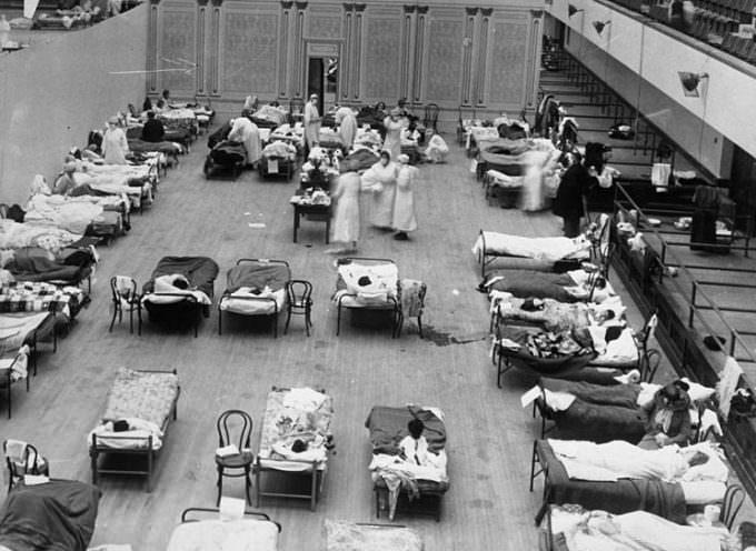 Influenza suina ed influenza spagnola: qualche somiglianza, moltissime differenze