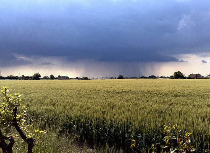 """Coldiretti: """"Estate 2009, grande caldo e violenti temporali"""""""