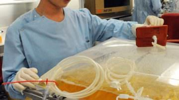 Influenza A: OMS, preoccupazione per vaccino cinese