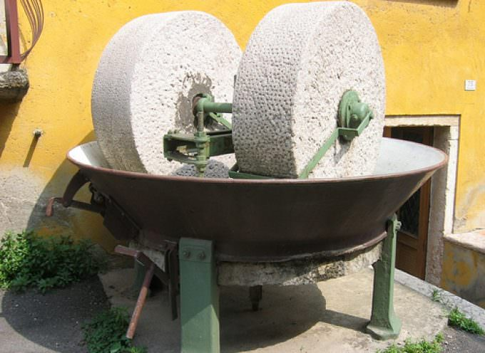 Da scarti di frantoio ad acqua potabile: il progetto Medolico