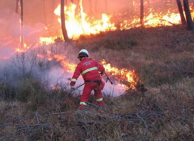 Continuano gli incendi sul territorio napoletano e in tutta la regione