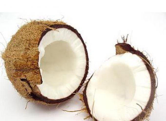 L'olio di cocco: conserva i cibi e combatte i batteri
