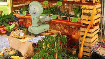 Frutta e verdura, solo il 20% rispetta le etichette