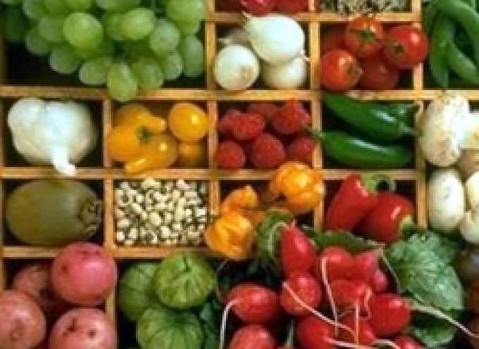 """Abruzzo: Per rilanciare l'economia agricola arriva il """"Mercato della Terra"""""""