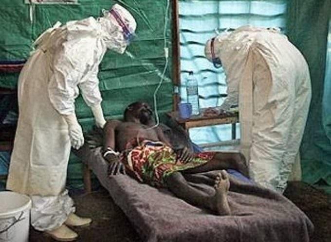 Africa: scoperto Lujo, nuovo virus mortale