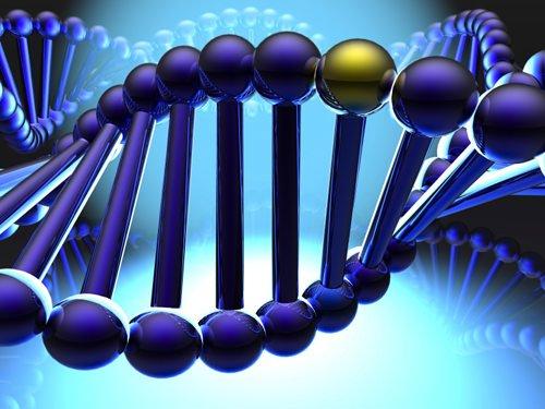 """Alimentazione sana ed esercizio fisico contro il DNA """"cattivo"""""""