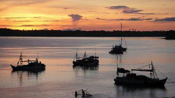 Pesca: Coinvolgere anche i Paesi terzi nella tutela dell'ecosistema marino
