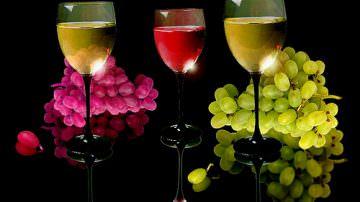 Il Veneto promuoverà nei Paesi extraeuropei i propri vini autoctoni