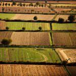 Agricoltura, PIL positivo ma pesano costi elevati
