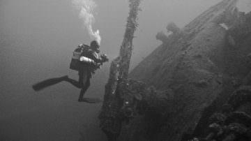 Calabria: Necessaria una verifica urgente sullo stato di salute del mare