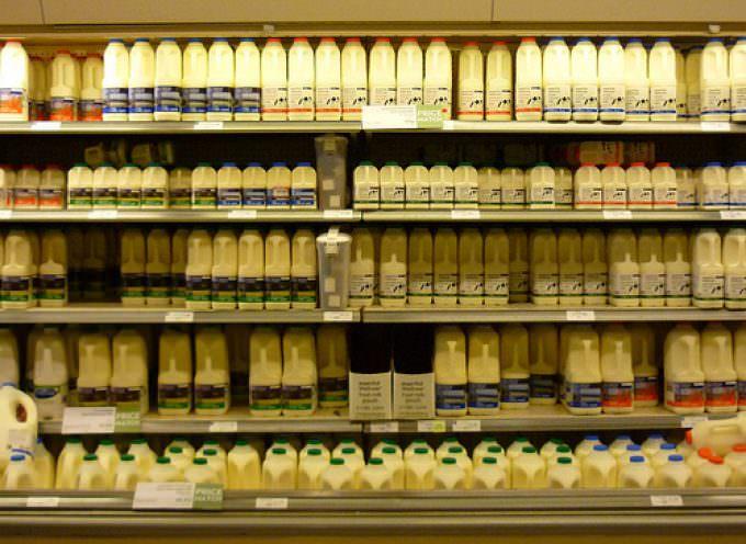 Federconsumatori: Il latte è troppo caro, serve l'intervento del Governo